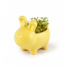 Mini zahrádka - Zvířátkový květináč králík - Řeřicha