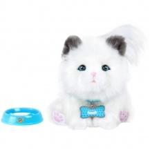 Little Live Pets Moje vysněné koťátko (od 4 let)