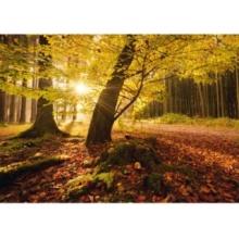 SCHMIDT Puzzle Kouzlo podzimu 1000 dílků