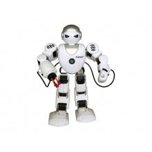 Rc model ROBOT TEDDIES FOBOS česky mluvící