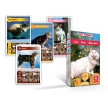 Karty Kvarteto Kočky (od 3 let)