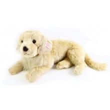 velký plyšový pes retrívr, 53 cm (od 0 let)