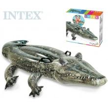Intex Nafukovací  krokodý