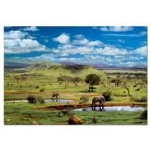 EDUCA Puzzle Národní park Tsavo, Keňa 500 dílků