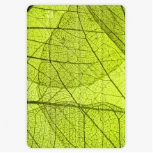Pouzdro  Smart Cover - Leaves - iPad 2 / 3 / 4