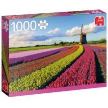 JUMBO Puzzle Pole tulipánů 1000 dílků