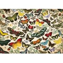 JUMBO Puzzle Plakát s motýly 1000 dílků