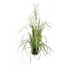 Bílé zvonky v trávě, 105 cm