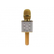 Dětský karaoke mikrofon TEDDIES 25 cm