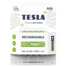 1099137210 Tesla - AAA nabíjecí baterie NiMH 800 mAh (HR03, mikrotužková, blister) 4 ks